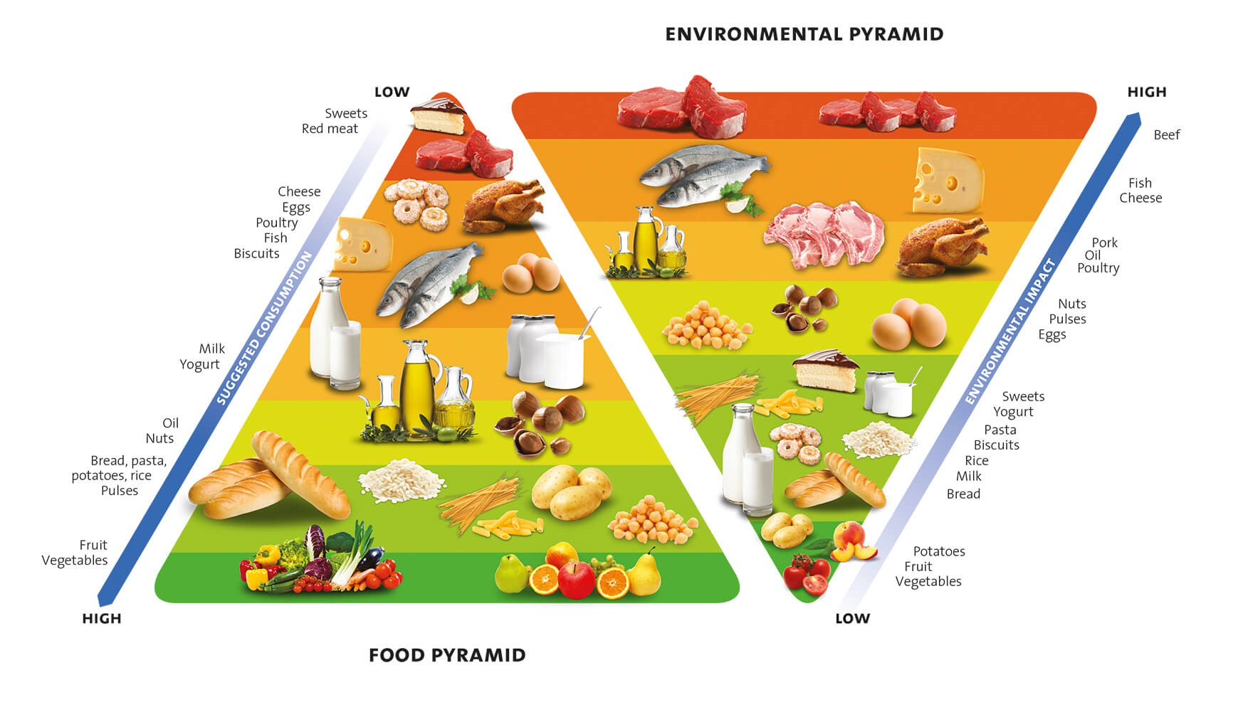 Food Pyramid Barilla Center for Food & Nutrion (2015)